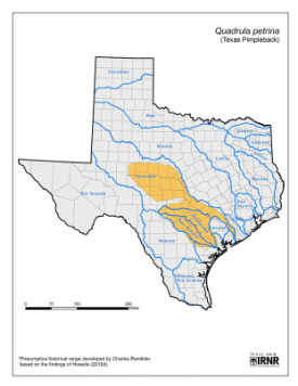 Map Of Texas Natural Resources.Conservation Status Maps Texas A M Agrilife Dallas Center
