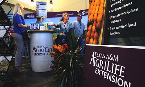 extension state fair booth 2017.jpg